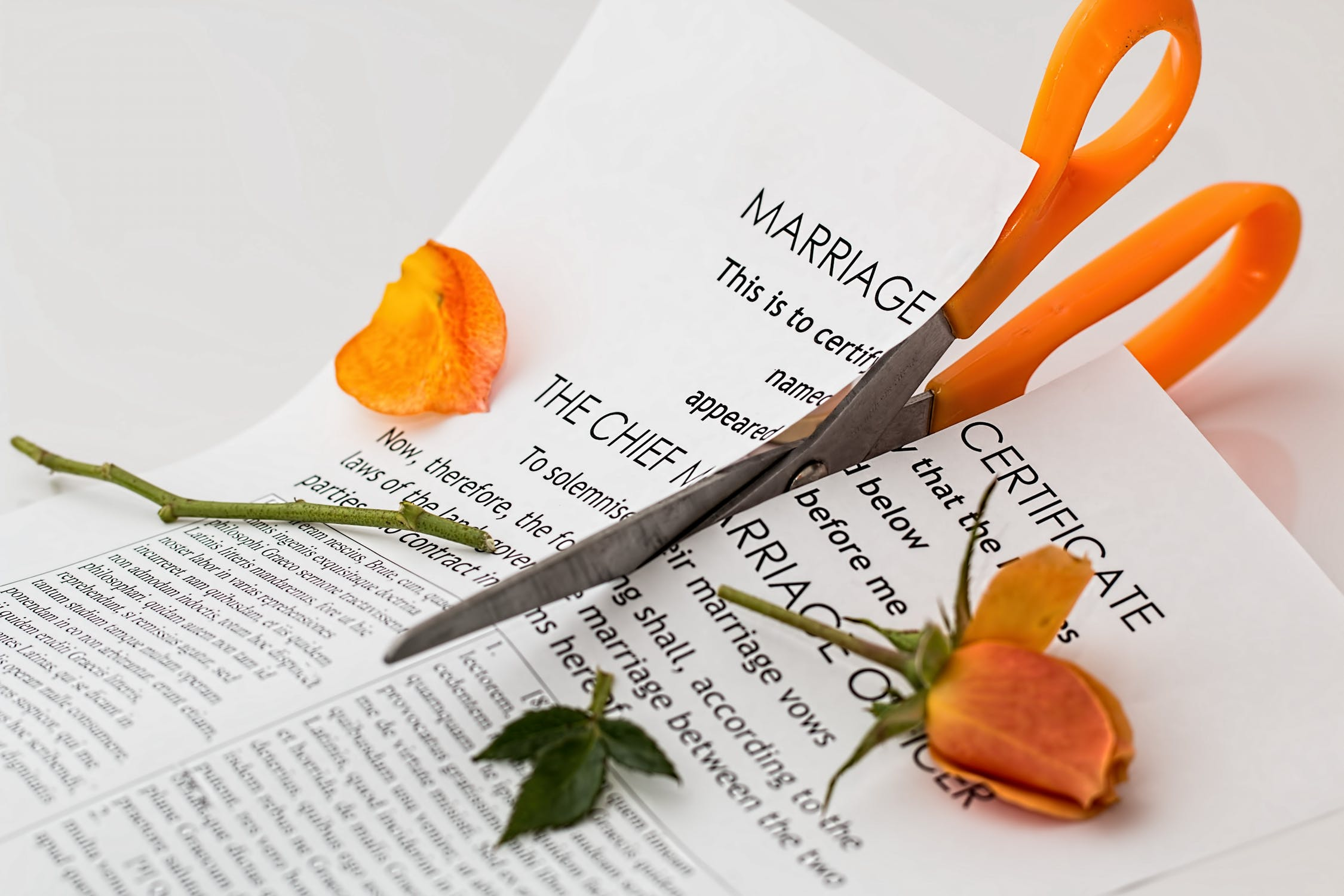 Divorce - Torn Up Marriage Certificate